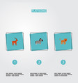 set of animal icons flat style symbols with deer vector image