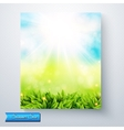 Summer sun burst over a fresh green meadow vector image