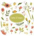 big set hand drawn herbs plants and flowers vector image