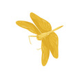 bright yellow dragonfly with long body and two vector image