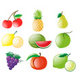 different types of fruits vector image vector image