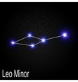 Leo Minor Constellation with Beautiful Bright vector image vector image