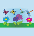 two butterflies and two dragonflies fly vector image vector image