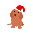 a dog in a santas hat vector image