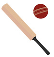 Cricket bat and ball vector image vector image