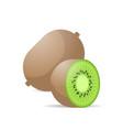 fresh juicy kiwi icon tasty ripe fruit isolated on vector image
