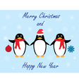 penguins winter vector image vector image