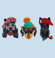 set 2 cartoon hipster dogs vector image vector image