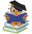 Wise owl reading book vector image