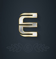 Letter E Template for company logo with monogram vector image