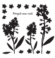 Set of bouquet beautiful forget-me-not flowers vector image