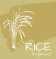 Background rice2eps vector image