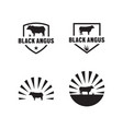 black angus logo icon template vector image