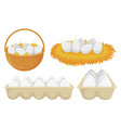 eggs in nest and basket tray chickens eggs vector image vector image