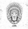 hipster animal lion with indian feather headdress vector image