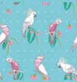 aqua cockatoos and galah australian birds seamless vector image