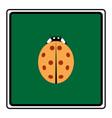 ladybird isolated vector image vector image