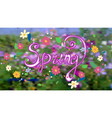 spring inscription with curls with different vector image vector image