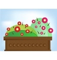 Two cactus with flowers vector image vector image