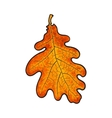Beautiful orange colored autumn oak leave isolated vector image vector image