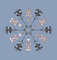 Colorful snowflakes isolated of snowflake fine