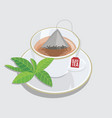 cup of black tea - triangle tea bag with leaf vector image
