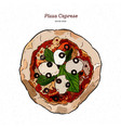 pizza caprese with mozzarella tomatoes olives vector image