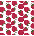 red berry pattern exotic summer raspberry texture vector image vector image