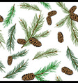 seamless pattern with pinecone branch Pine cone vector image