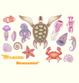 set of marine life for your creativity vector image vector image