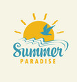 travel summer banner with inscription sun gull vector image vector image