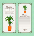 vintage label with yucca plant vector image vector image