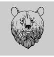 Graphic Bear Head Logo vector image