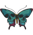 a beautiful colorful butterfly vector image vector image