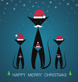 Cat merry christmas vector image vector image