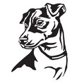 decorative portrait of dog jack russell terrier vector image