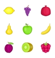 Fresh healthy fruit icons set cartoon style vector image vector image