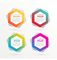 geometric hexagonal banners set with text space vector image vector image