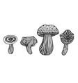 hand drawn magic mushroom vector image vector image