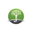 j letter with tree leaf logo template vector image vector image