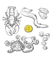 Octopus lobster eel mussel oyster seafood vector image