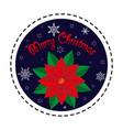 poinsettia merry christmas vector image