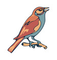 sparrow bird sitting on a branch flat style vector image vector image