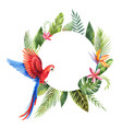 watercolor frame with red parrot tropical vector image vector image