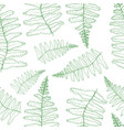 fern silhouette collection green isolated vector image