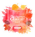 autumn leaf foliage watercolor vector image vector image
