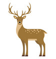 deer in flat style image vector image