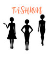 fashion woman silhouette with different hairstyle vector image