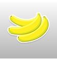 Flat sticker berry vector image