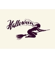 Halloween Beautiful witch flying on broomstick vector image vector image